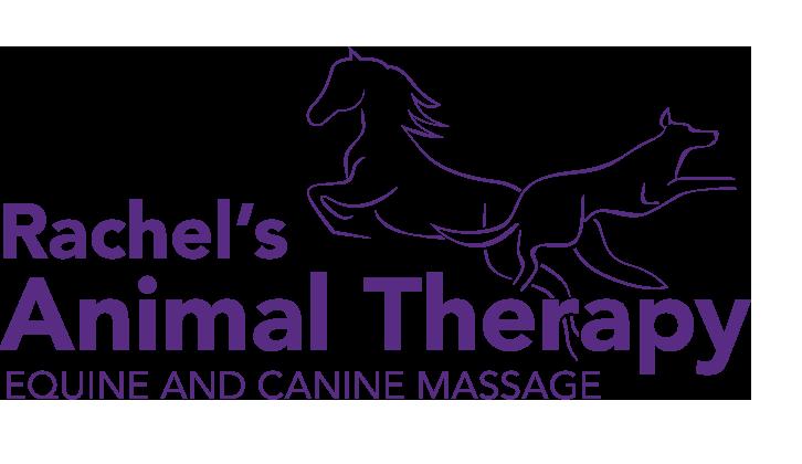 Rachel's Animal Therapy